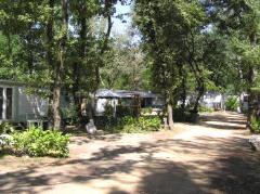 Camping Le Bois Des Roches, Bouchet