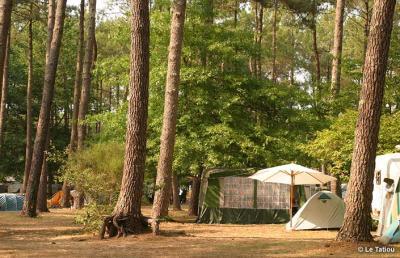 Camping Municipal Le Tatiou, Bias
